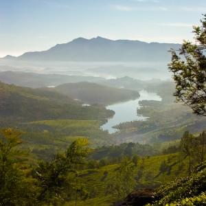 Views Around Munnar